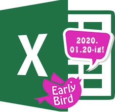 excel_EB_2020.jpg