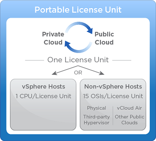 Portable License Unit